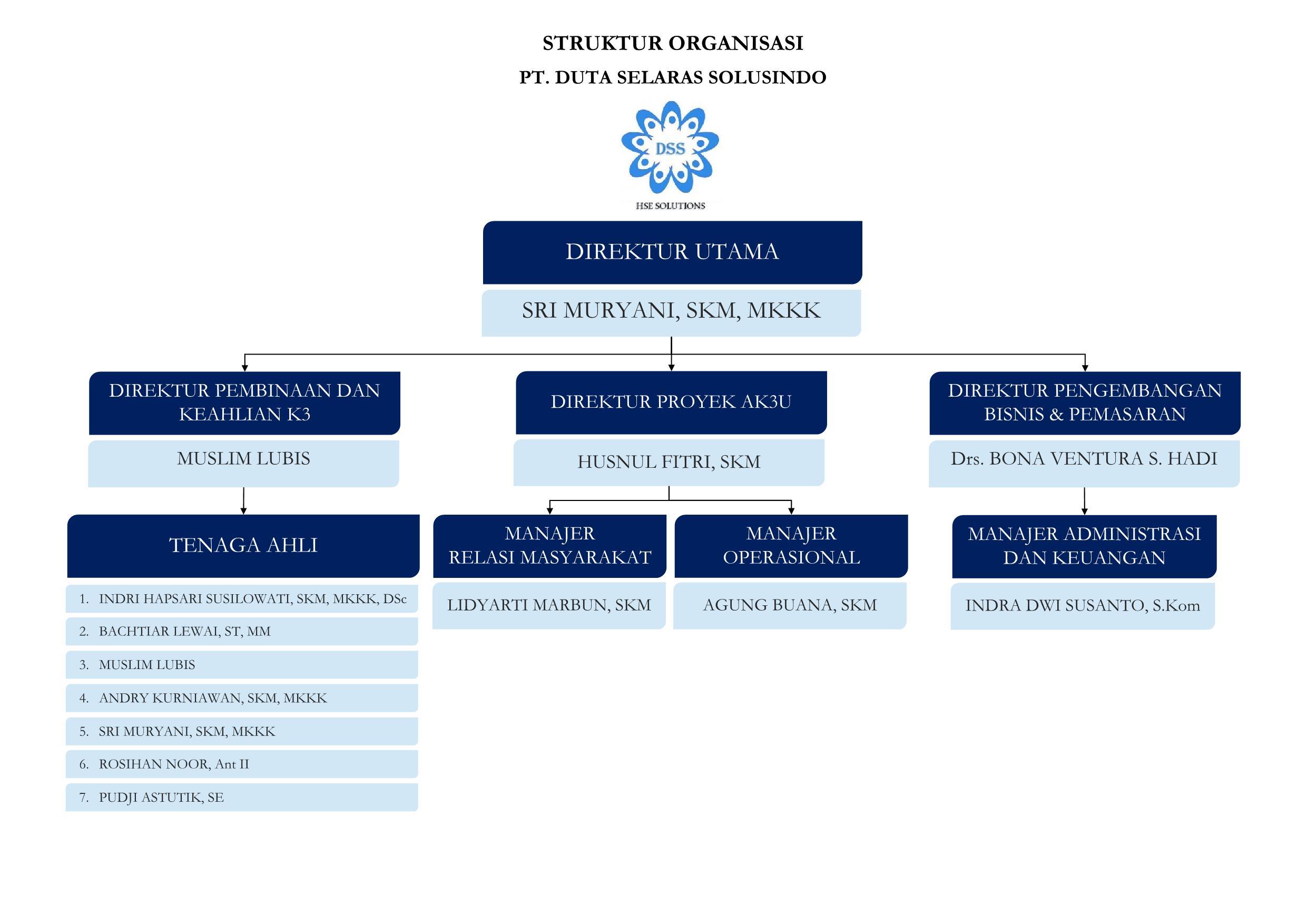 struktur-organisasi-pt-dss